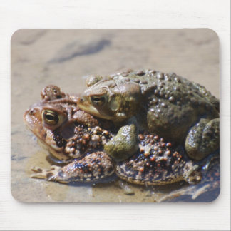 Pair of Frogs Mouse Pad