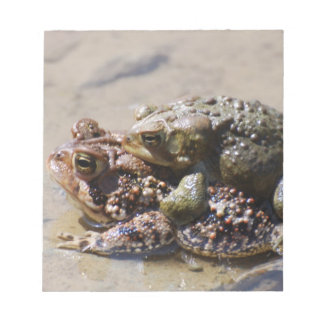 Pair of Frogs Notepad