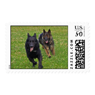 Pair of German Shepherds Postage