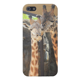 Pair of Giraffes, iPhone Case