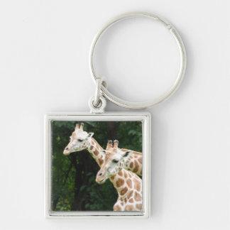 Pair of Giraffes Keychain