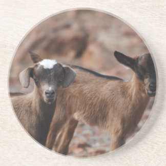 Pair of Goats Drink Coasters