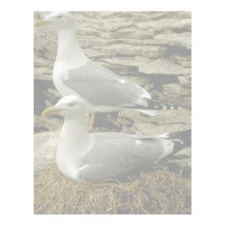 Pair of Herring Gulls with nest Custom Letterhead