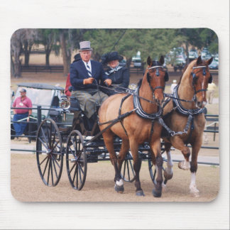 pair of horse driving carriage mouse pad