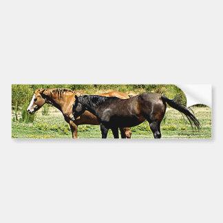 Pair of Horses Car Bumper Sticker