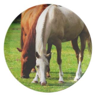 Pair of Horses in Rural Field Dinner Plates