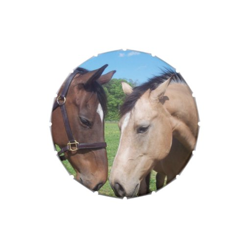 Pair of Horses Jelly Belly Candy Tins