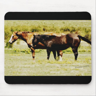 Pair of Horses Mouse Pad
