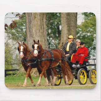 pair of horses pulling a carriage mouse pad