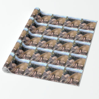 Pair of horses gift wrap