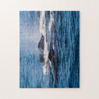 Pair of Humpback Whales Jigsaw Puzzle