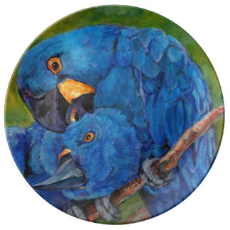 Pair of hyacinth macaws plate