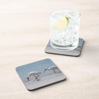 Pair of Ibis Drink Coasters
