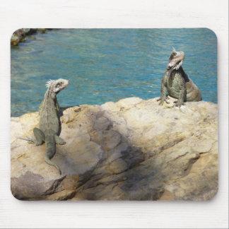 Pair of Iguanas Mousepad