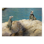 Pair of Iguanas Tropical Wildlife Photography Card