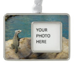 Pair of Iguanas Tropical Wildlife Photography Christmas Ornament