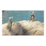 Pair of Iguanas Tropical Wildlife Photography Rectangular Sticker