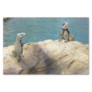 Pair of Iguanas Tropical Wildlife Photography Tissue Paper
