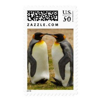 Pair of King Penguins, Falklands Postage