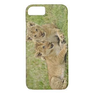 Pair of lion cubs playing, Masai Mara Game iPhone 8/7 Case