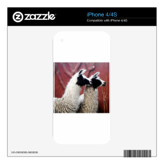 Pair of Llamas iPhone 4S Skin