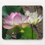 Pair of Lotus Flowers I Mouse Pad