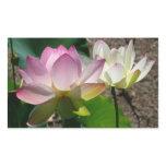 Pair of Lotus Flowers I Rectangular Sticker