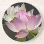Pair of Lotus Flowers II Coaster
