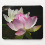 Pair of Lotus Flowers II Mouse Pad