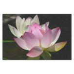 Pair of Lotus Flowers II Tissue Paper