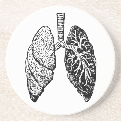 pair of lungs coaster