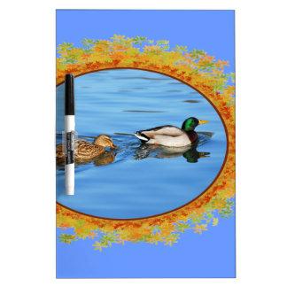 Pair of mallard ducks in frame of leaves Dry-Erase whiteboards
