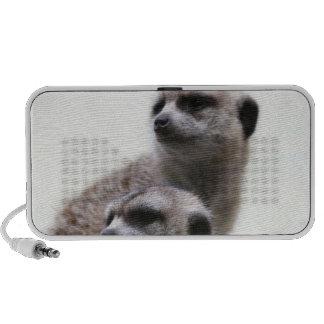 Pair of Meerkats on Speakers
