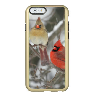 Pair Of Northern Cardinals Incipio Feather Shine iPhone 6 Case