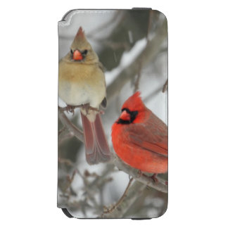Pair Of Northern Cardinals iPhone 6/6s Wallet Case