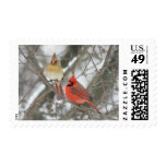 Pair Of Northern Cardinals Postage