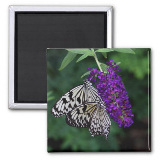 Pair of Paper Kites Magnet