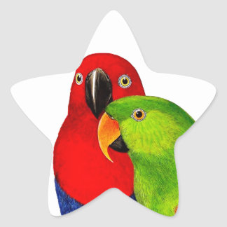 Pair of Parrots Love Birds Star Sticker