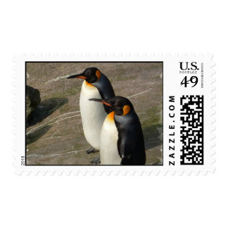 Pair of Penguin Postage Stamps