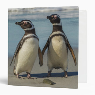 Pair of penguins on the beach binder