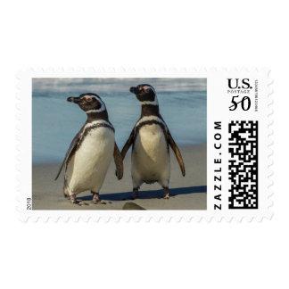Pair of penguins on the beach postage