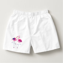 Pair Of Pink And Blue Flamingos Illustration Boxers