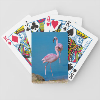 Pair of Pink Flamingos Playing Cards Card Deck