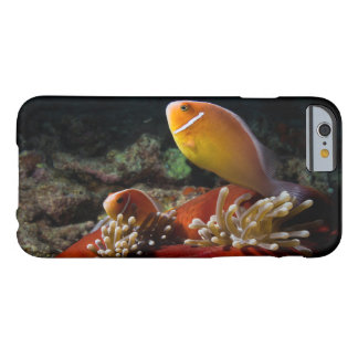 Pair of Pink Skunk Clownfish iPhone 6 Case
