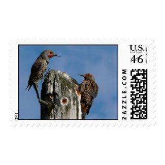 Pair of Pole Dancing Birds stamp