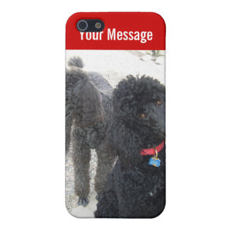 Pair of Poodles iPhone Case