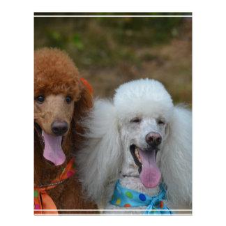 Pair of Poodles Letterhead