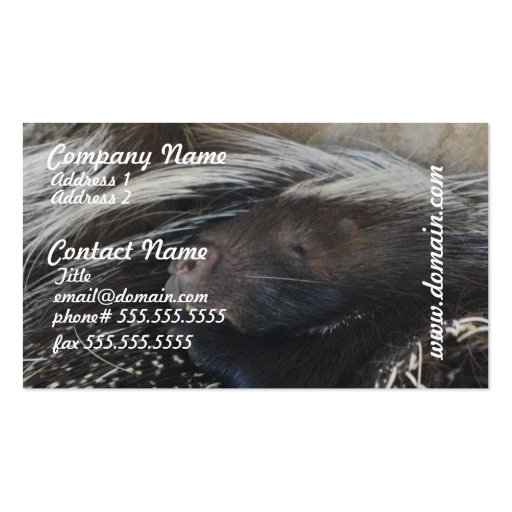 Pair of Porcupines Business Cards