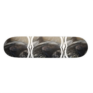 Pair of Porcupines Skateboard