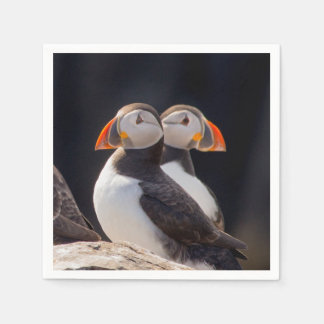 Pair of Puffins Napkin